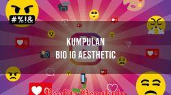 Bio IG Aesthetic